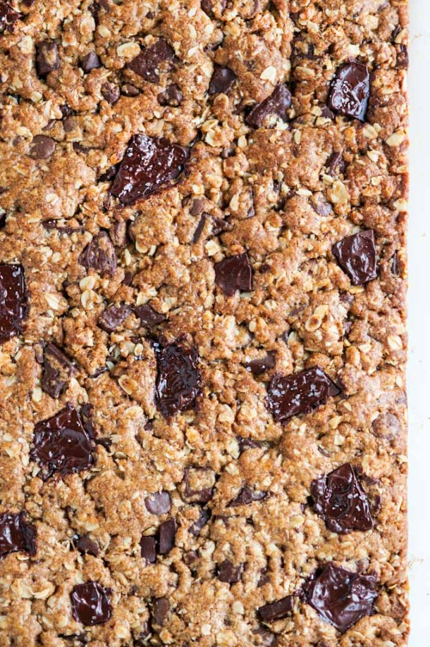 Whole dark chocolate oatmeal bars close up