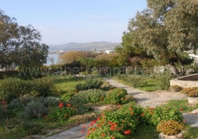 3 Bedrooms, Villa, Vacation Rental, 2 Bathrooms, Listing ID 1104, Antiparos, Greece,