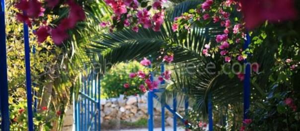 1 Bedrooms, Apartment, Vacation Rental, 1 Bathrooms, Listing ID 1170, Iraklia, Greece,