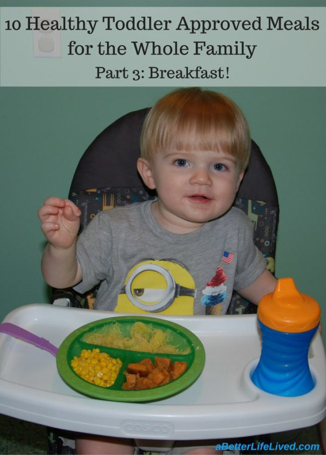healthy toddler approved breakfasts for the whole family!