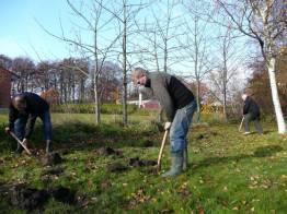 2007- plante hæk00004
