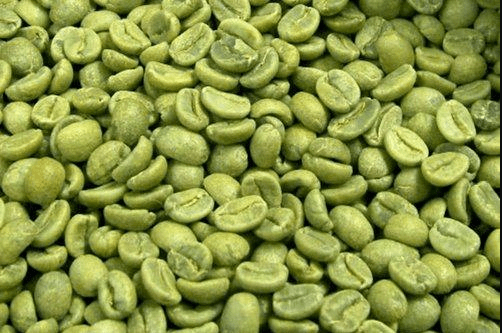 بذور بن خضراء