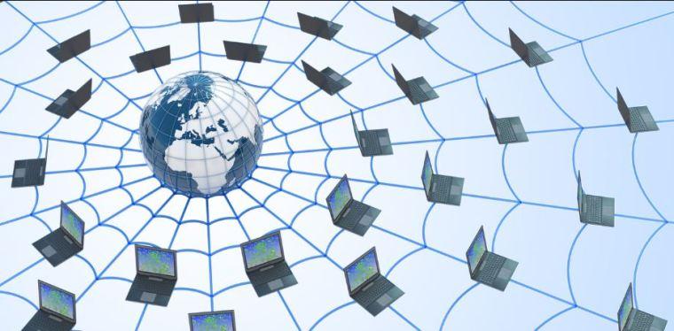 شبكة الويب