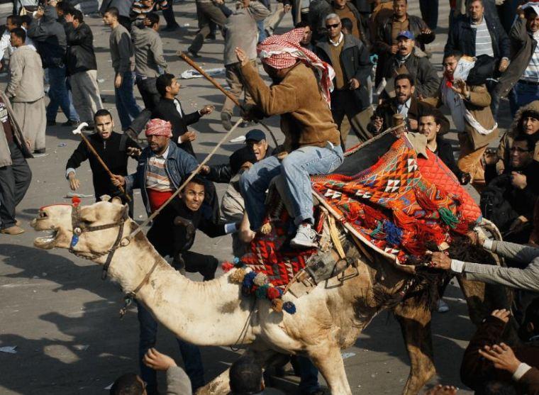 موقعة الجمل فى الثورة المصرية