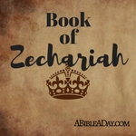 The book of the Zechariah in the Bible