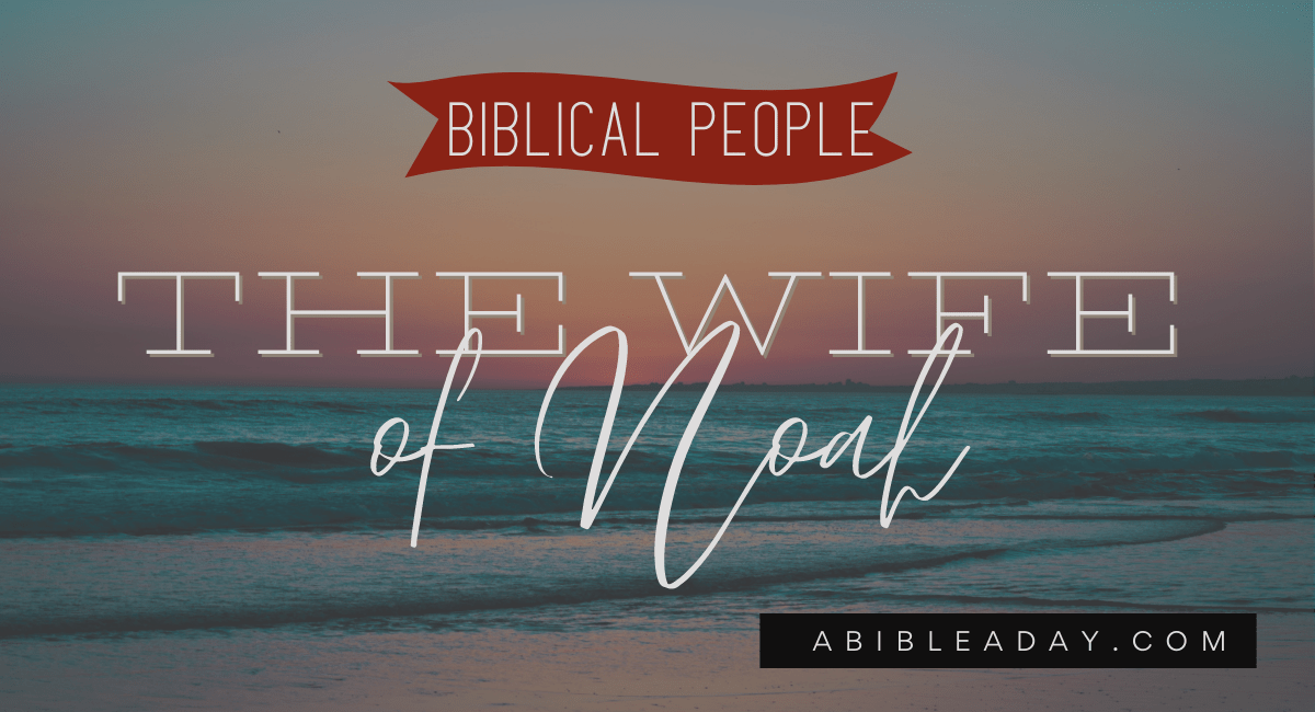 The Wife of Noah