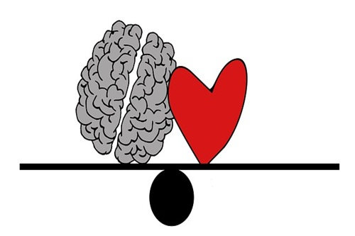 Brain and heart balanced