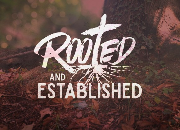 Rooted & Established