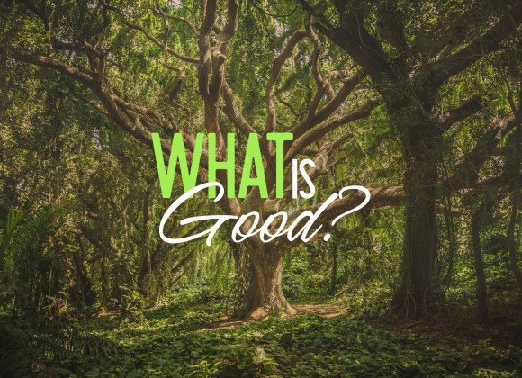 What is Good?