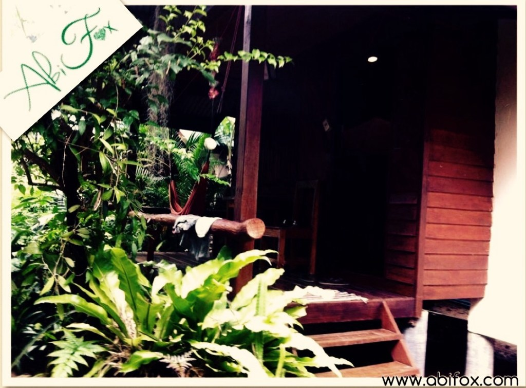 Dolphin bungalow, Koh Phangan, Ban Thing Pan Noi, places to stay, nature, quiet, relax,
