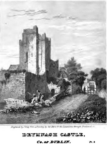 Drymnagh_castle_Dublin_1820