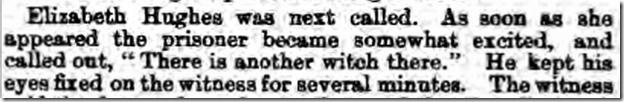 Worcestershire_Journal_18_December_1875_1