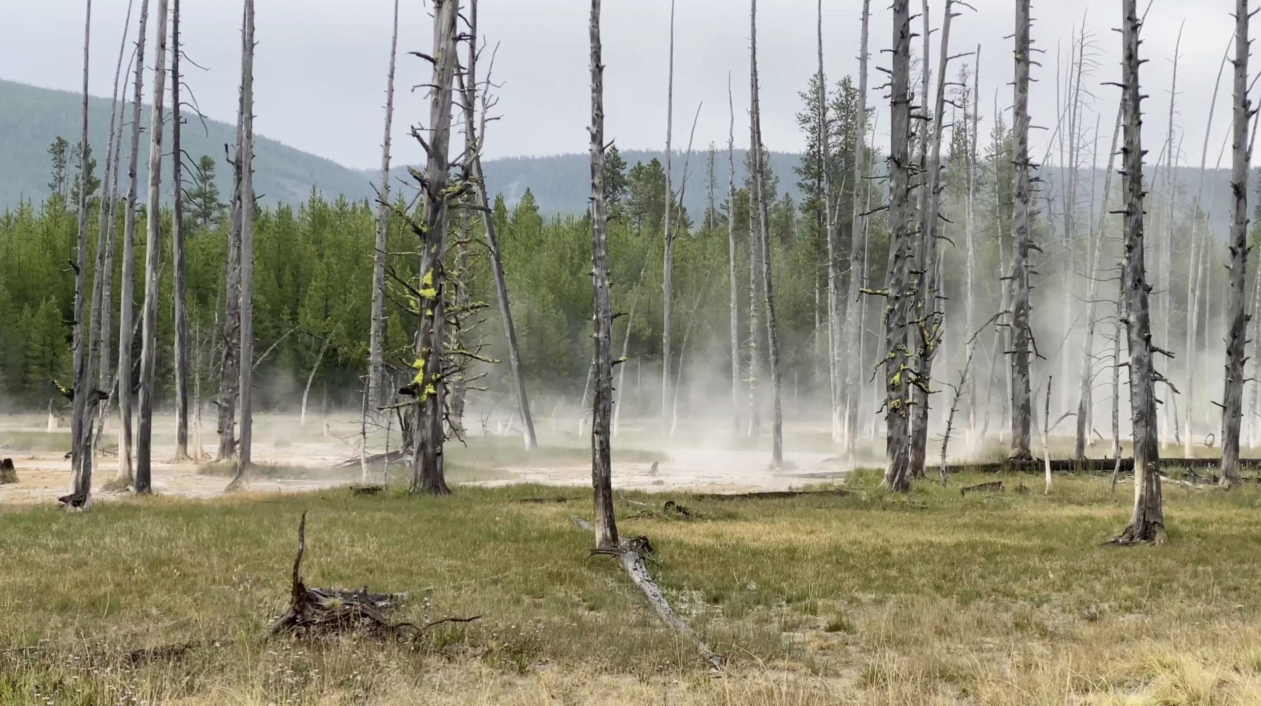 Seventeen Views of Yellowstone