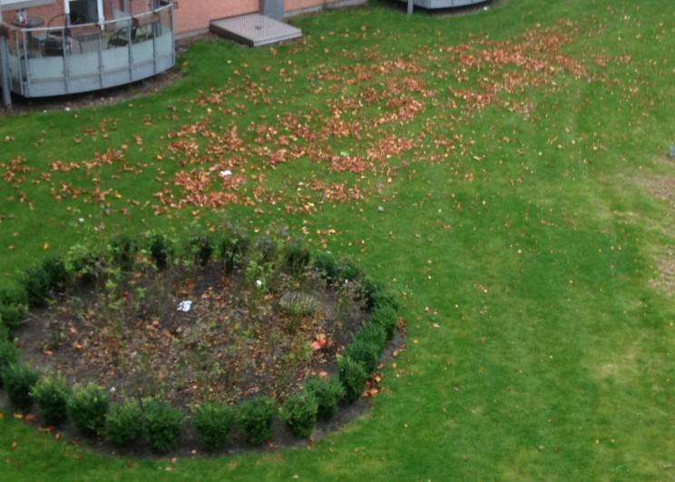Efterårsstemning