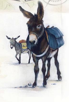 Le marché aux ânes