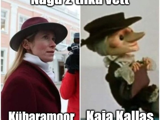 Kaja Kallas Kübaramoor