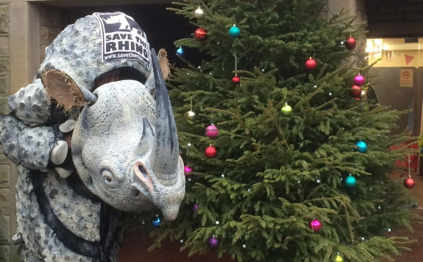 pic of rhino with xmas tree at Oakwell Hall