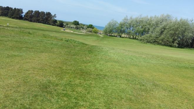 pic of Musselburgh golf course