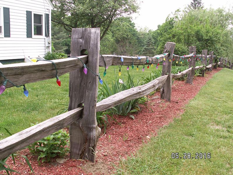 Black Locust Fence