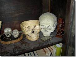 череп скалился в улыбке челюстьюстуча... 014
