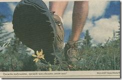 сапог солдатский раздавил цветок...