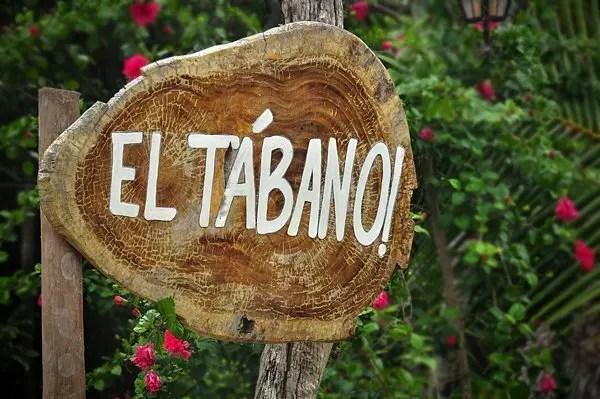 El-Tabano-002 El Tábano  -  Tulum, Mexico Mexico Rivera Maya  Yucatan Tulum Mexico Mexican Food Food