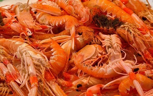 Santa-Caterina-Market_008 Santa Caterina Market  -  Barcelona, Spain Barcelona Spain  Spain Markets Food Barcelona