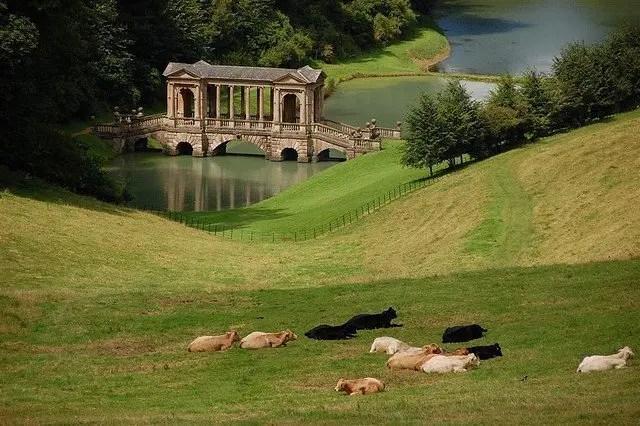 BathVT-Profesor City of Bath  -  Somerset, England UK West Country  Somerset Bath