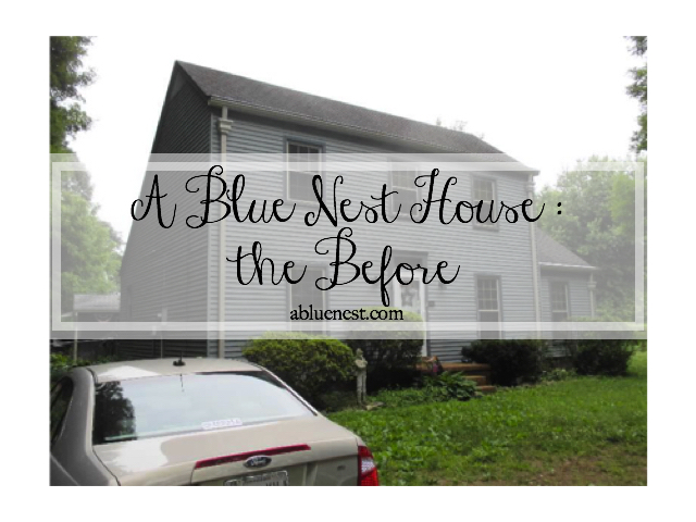 The Before - A Blue Nest