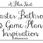 Bathroom Plan and Inspiration