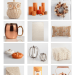 Cozy Fall Must Haves