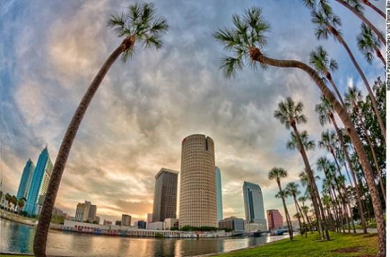 Palms Garole - Tampa Bay