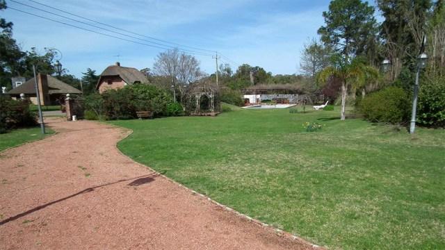 Blick vom Haus auf den Garten