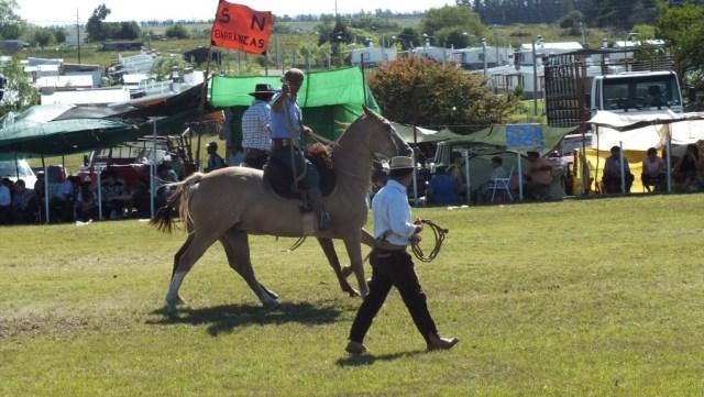 In Chile heißt er Huaso, in Uruguay und Argentinien Gaucho: Viehhirten zu Pferd