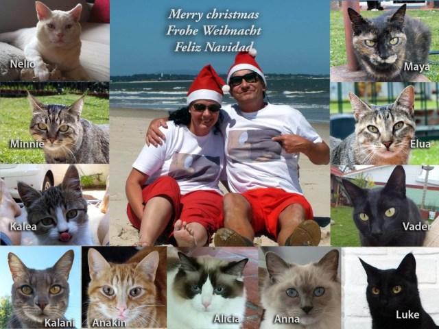 Frohe Weihnachten - Feliz Navidad - Merry Christmas!
