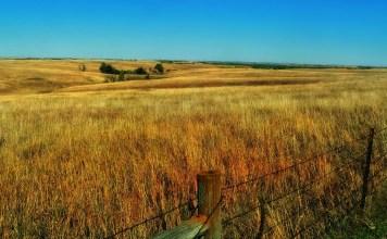 Nebraska - Willa Cather