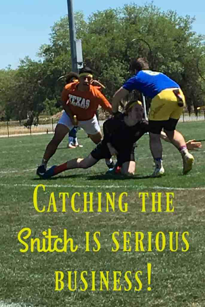 Catch the Snitch