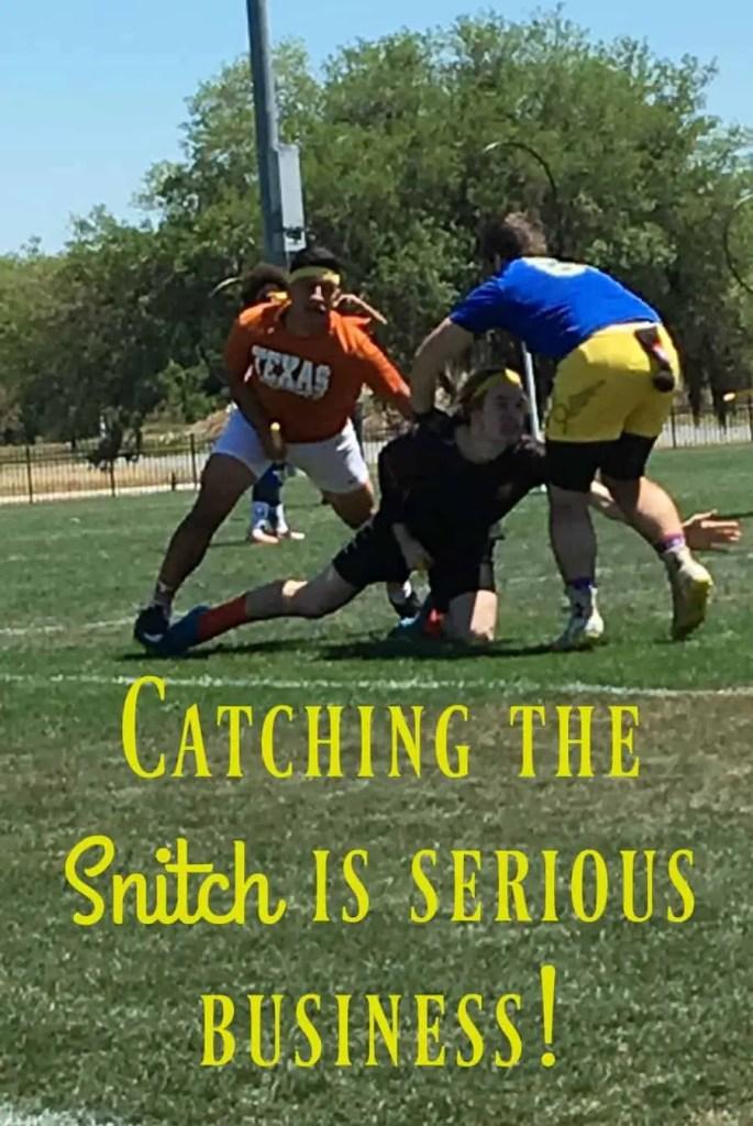 Catch the Snitch