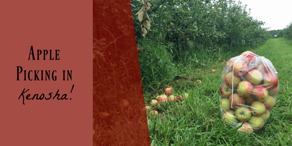 apple picking things to do in Kenosha, WI