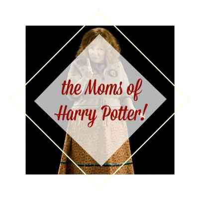 9 Harry Potter Moms ~ The Good, the Bad and the Unusual!