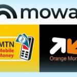 Et si le mobile money devenait une solution panafricaine avec Mowali?