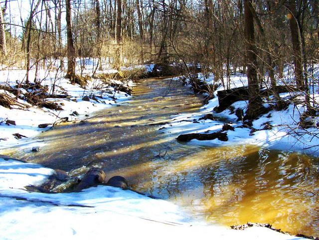 Flood Runoff Analysis from Snowmelt  Envelope Curves