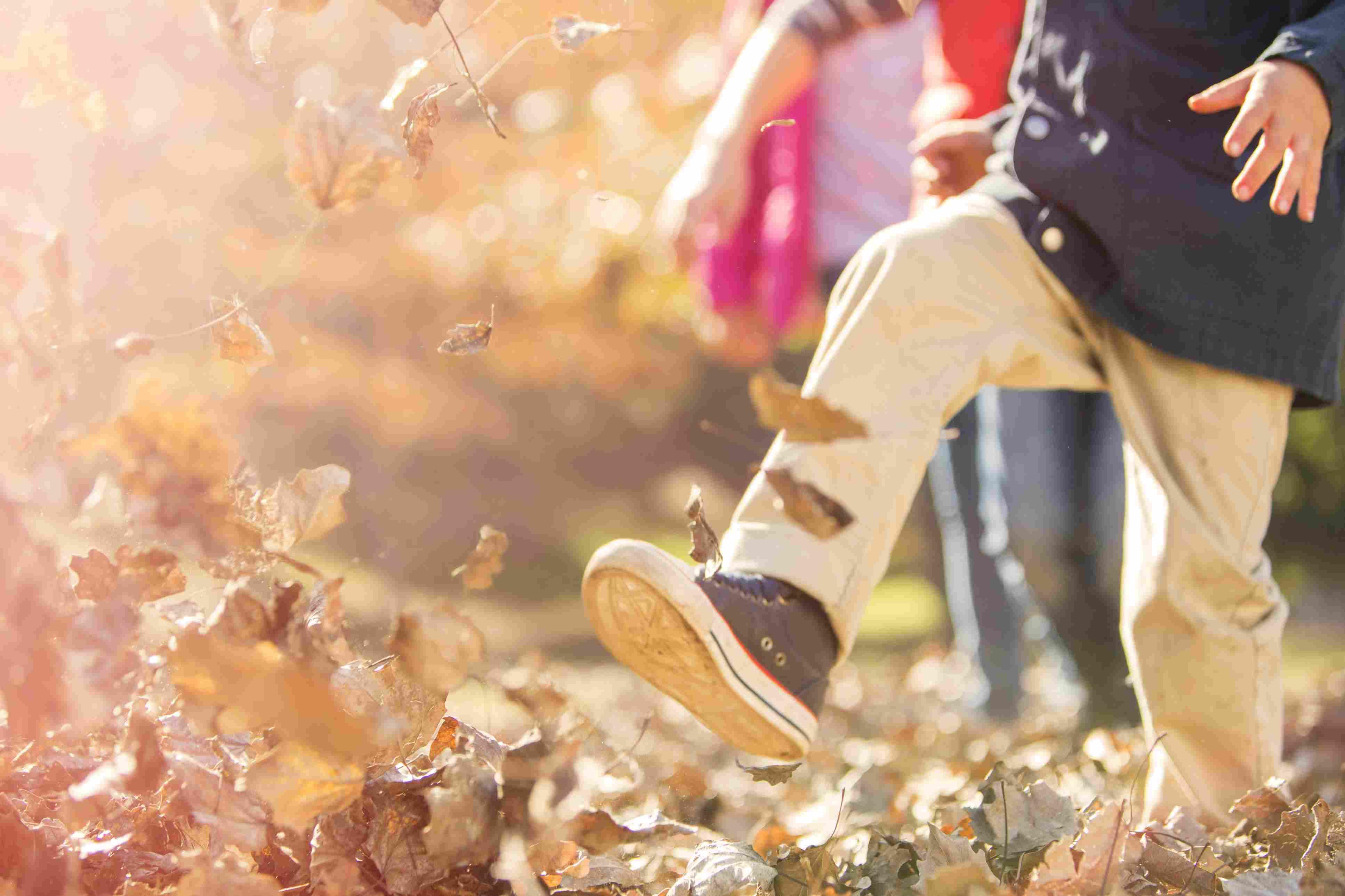 Estaciones En Ingles Spring Summer Autumn Winter