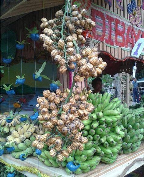 Alimuran Fruit on Branch
