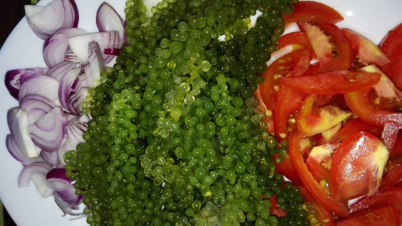Lato Salad
