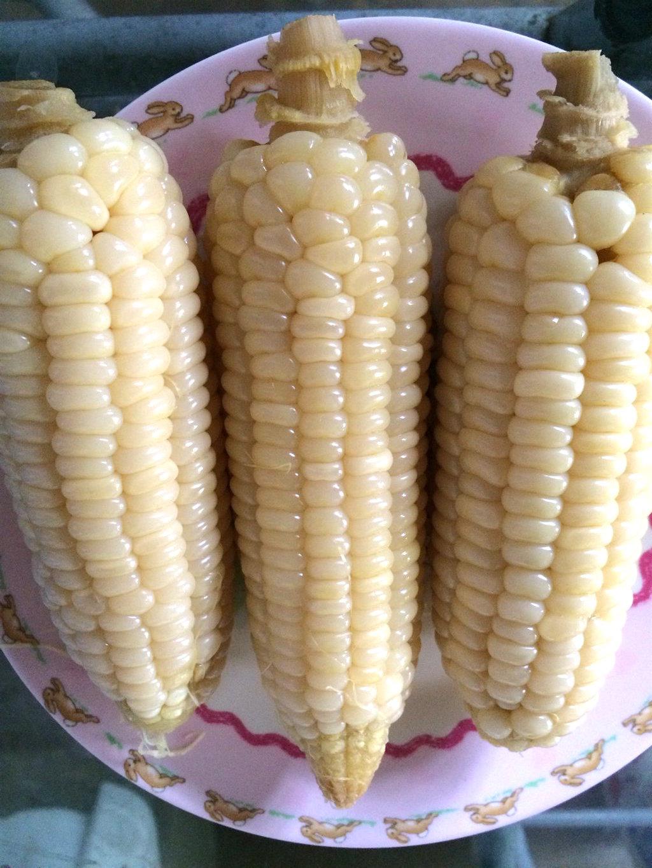 Nilagang Mais (Boiled Corn)