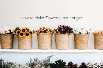 How to Make Bouquet Flowers Last Longer