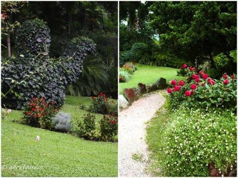 sculture-vegetali-giardino-heller2