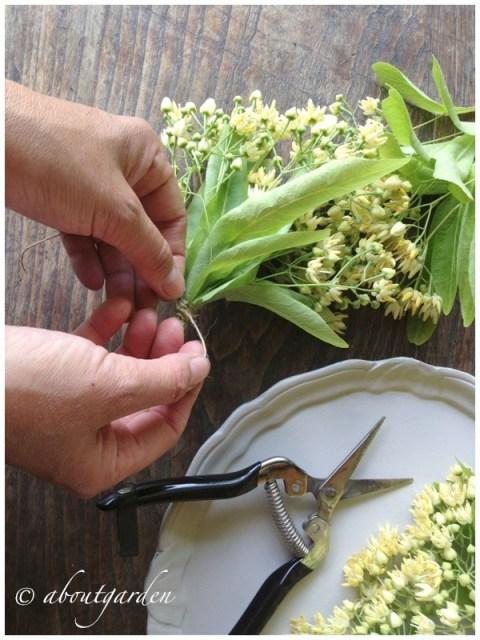 mazzetti di fiori