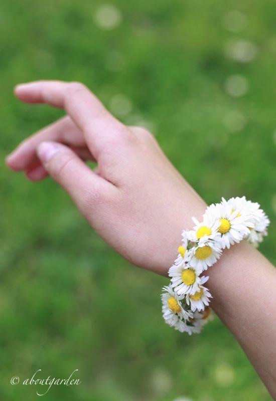 bracelet daisy